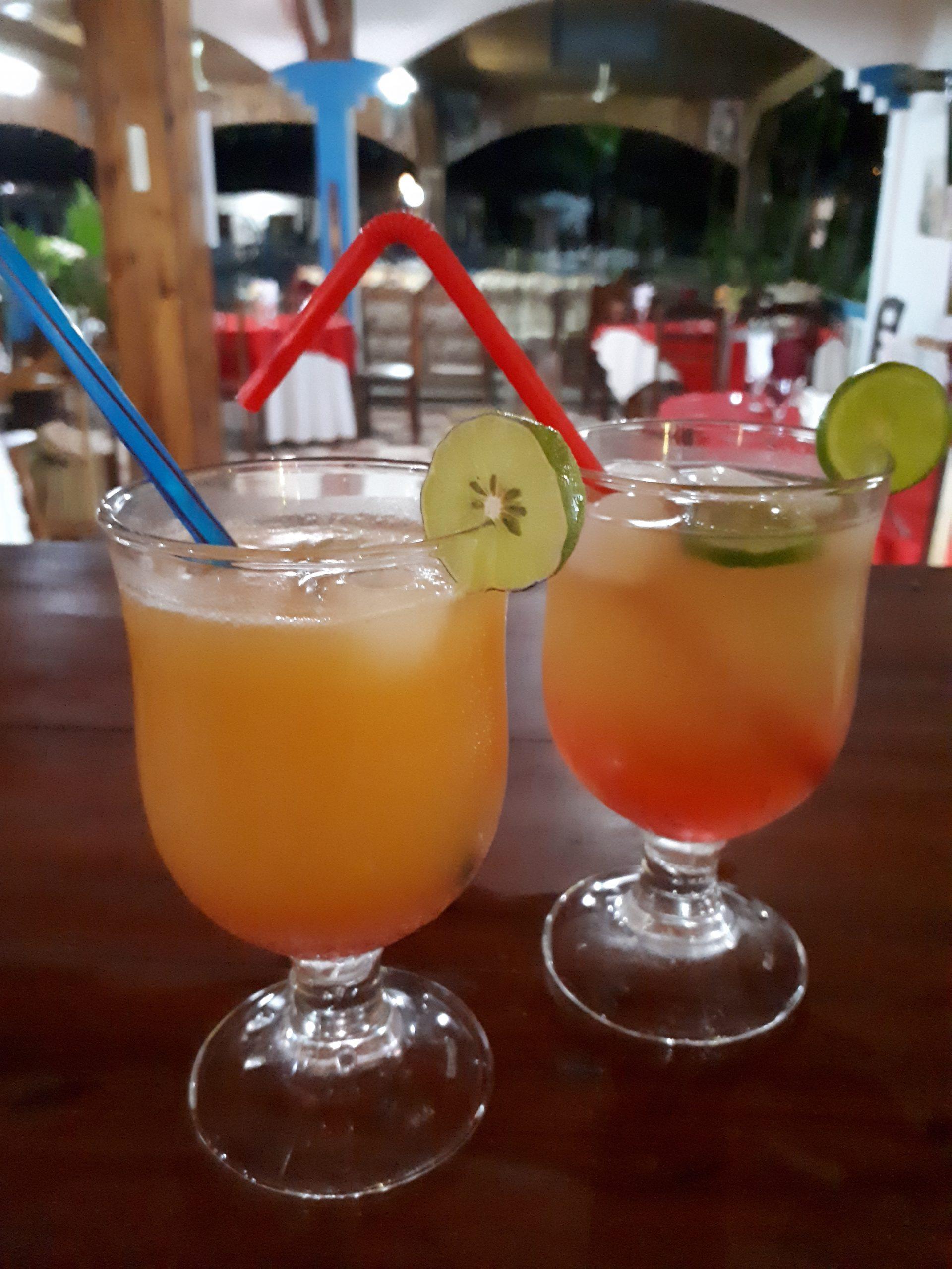 Bar et Dégustation Cocktails